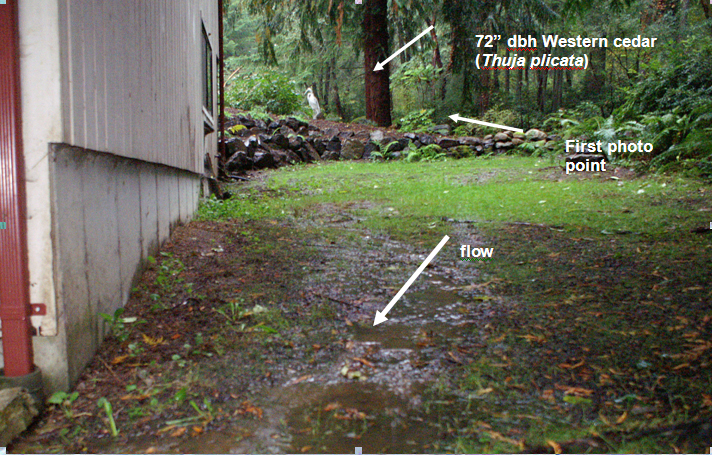 runoff through side yard