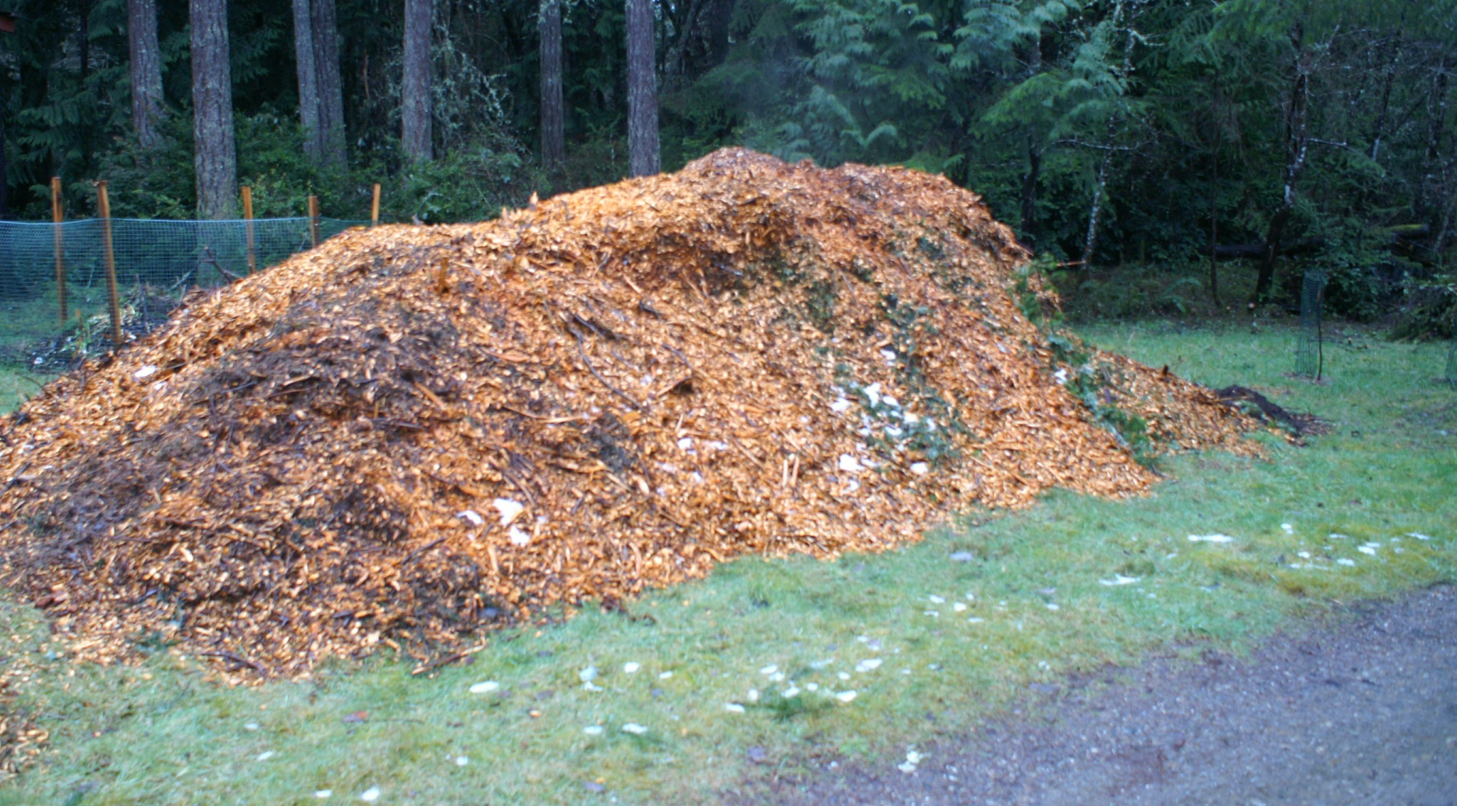 Wood Chip Gardening ~ Materials and methods my own personal jungle