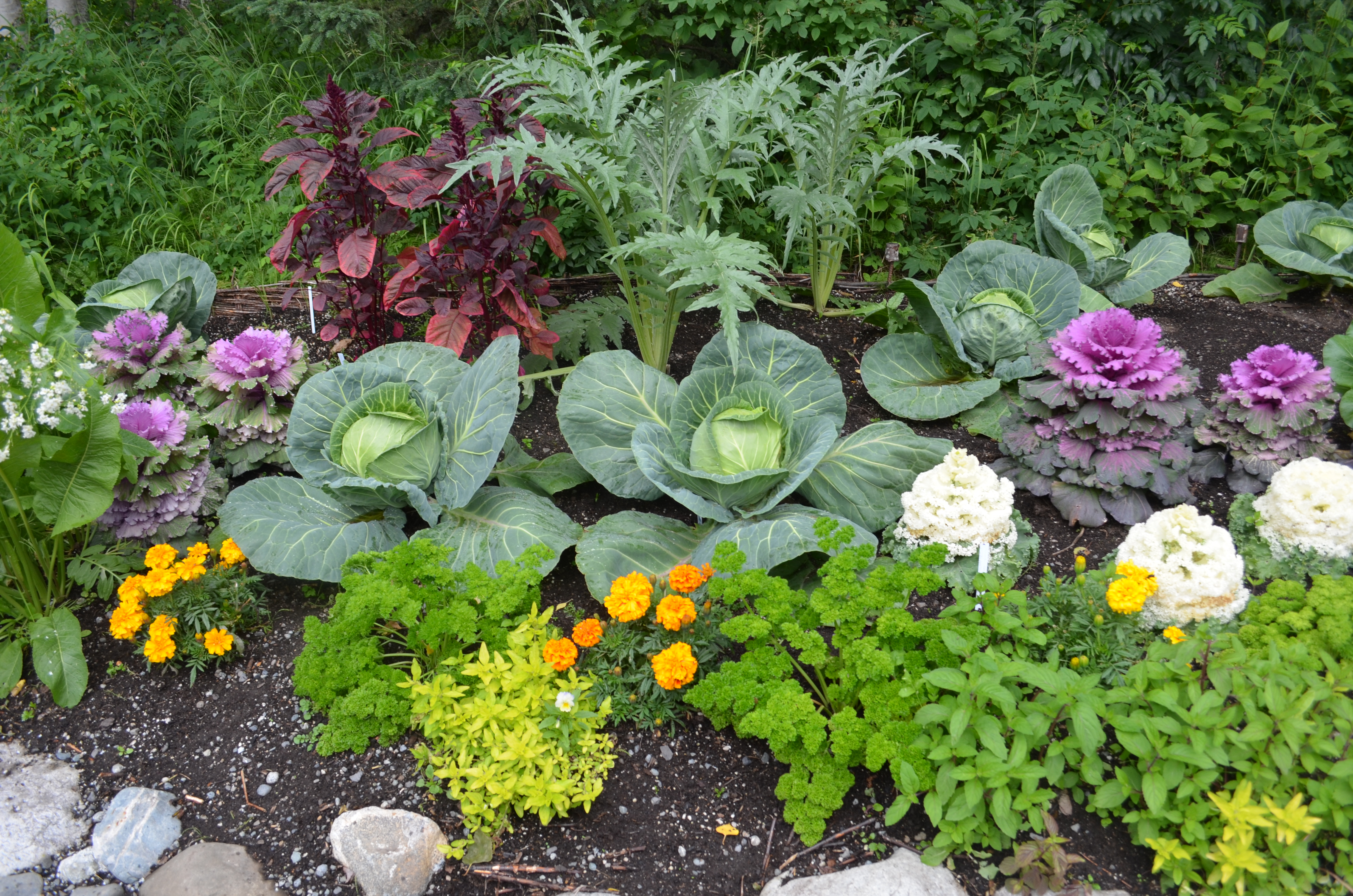Exceptional ... Garden Design Vegetables And Flowers